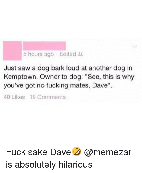 """Sawing: 5 hours ago Edited  Just saw a dog bark loud at another dog in  Kemptown. Owner to dog: """"See, this is why  you've got no fucking mates, Dave""""  40 Likes 19 Comments Fuck sake Dave🤣 @memezar is absolutely hilarious"""