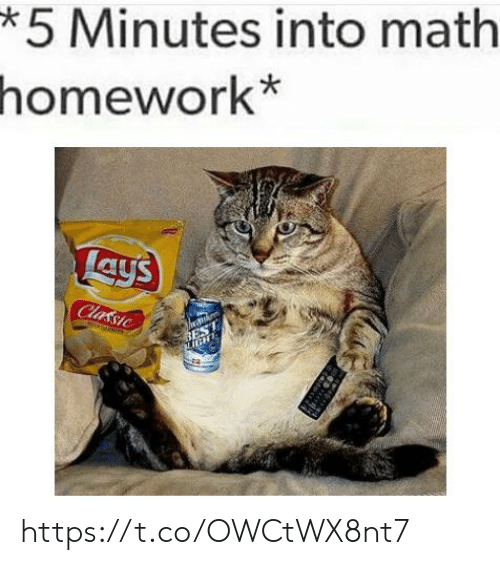 Lay's: *5 Minutes into math  homework*  Lays  Classic  BEST  IGHT https://t.co/OWCtWX8nt7