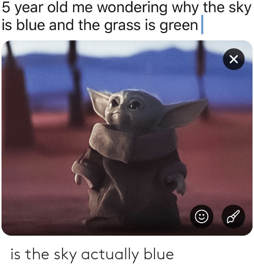 grass: 5 year old me wondering why the sky  is blue and the grass is green  X is the sky actually blue