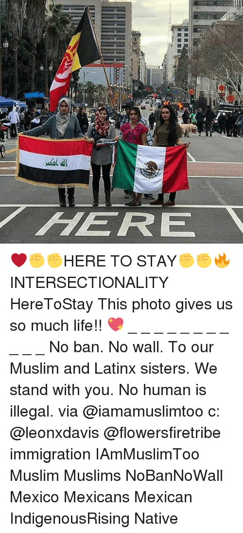 Life, Memes, and Muslim: 50  all  / HERE  .1 a  «E  ア ❤✊✊HERE TO STAY✊✊🔥 INTERSECTIONALITY HereToStay This photo gives us so much life!! 💖 _ _ _ _ _ _ _ _ _ _ _ No ban. No wall. To our Muslim and Latinx sisters. We stand with you. No human is illegal. via @iamamuslimtoo c: @leonxdavis @flowersfiretribe immigration IAmMuslimToo Muslim Muslims NoBanNoWall Mexico Mexicans Mexican IndigenousRising Native