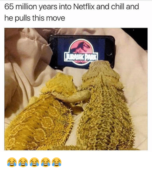 Netflix And Chilling: 65 million years into Netflix and chill and  he pulls this move 😂😂😂😂😂