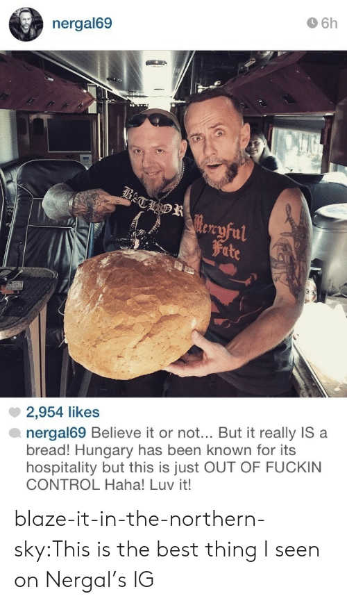 hospitality: 6h  nergal69  tre  Fite  2,954 likes  nergal69 Believe it or not.. But it really IS a  bread! Hungary has been known for its  hospitality but this is just OUT OF FUCKIN  CONTROL Haha! Luv it! blaze-it-in-the-northern-sky:This is the best thing I seen on Nergal's IG