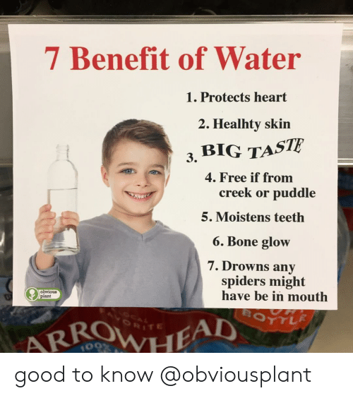Drowns: 7 Benefit of Water  Protects heart  2. Healhty skin  3, BIG TASTE  4. Free if from  creek or puddle  5. Moistens teetlh  6. Bone glow  7. Drowns any  spiders might  have be in mouth  obvious  plant  RITE  109 good to know @obviousplant