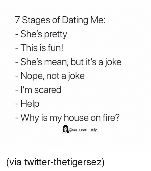 Sarcasm Only: 7 Stages of Dating Me  She's pretty  This is fun!  She's mean, but it's a joke  Nope, not a joke  I'm scared  Help  Why is my house on fire?  @sarcasm_only (via twitter-thetigersez)