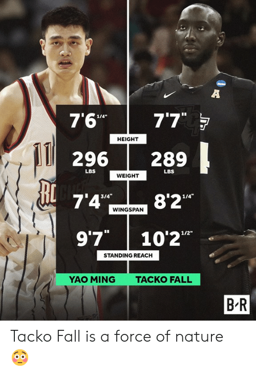 ming: 7'6"