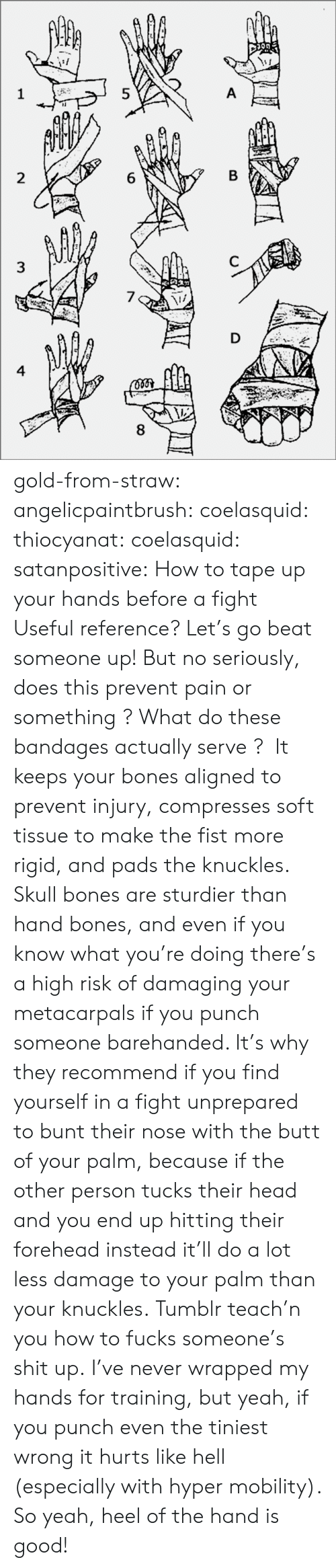The Butt: 8  6  5  3  4 gold-from-straw:  angelicpaintbrush:  coelasquid:  thiocyanat:  coelasquid:  satanpositive:  How to tape up your hands before a fight  Useful reference?  Let's go beat someone up! But no seriously, does this prevent pain or something ? What do these bandages actually serve ?   It keeps your bones aligned to prevent injury, compresses soft tissue to make the fist more rigid, and pads the knuckles. Skull bones are sturdier than hand bones, and even if you know what you're doing there's a high risk of damaging your metacarpals if you punch someone barehanded. It's why they recommend if you find yourself in a fight unprepared to bunt their nose with the butt of your palm, because if the other person tucks their head and you end up hitting their forehead instead it'll do a lot less damage to your palm than your knuckles.  Tumblr teach'n you how to fucks someone's shit up.   I've never wrapped my hands for training, but yeah, if you punch even the tiniest wrong it hurts like hell (especially with hyper mobility). So yeah, heel of the hand is good!