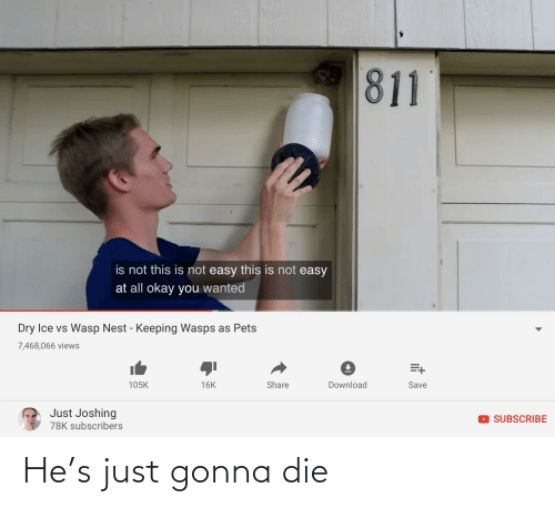 Joshing: 811  is not this is not easy this is not easy  at all okay you wanted  Dry Ice vs Wasp Nest - Keeping Wasps as Pets  7,468,066 views  105K  Share  Download  16K  Save  Just Joshing  DSUBSCRIBE  78K subscribers He's just gonna die