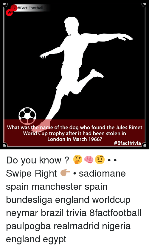 England, Football, and Memes: 8Fact Football  What was the name of the dog who found the Jules Rimet  World Cup trophy after it had been stolen in  London in March 1966?  Do you know ? 🤔🧠🤨 • • Swipe Right 👉🏽 • sadiomane spain manchester spain bundesliga england worldcup neymar brazil trivia 8factfootball paulpogba realmadrid nigeria england egypt
