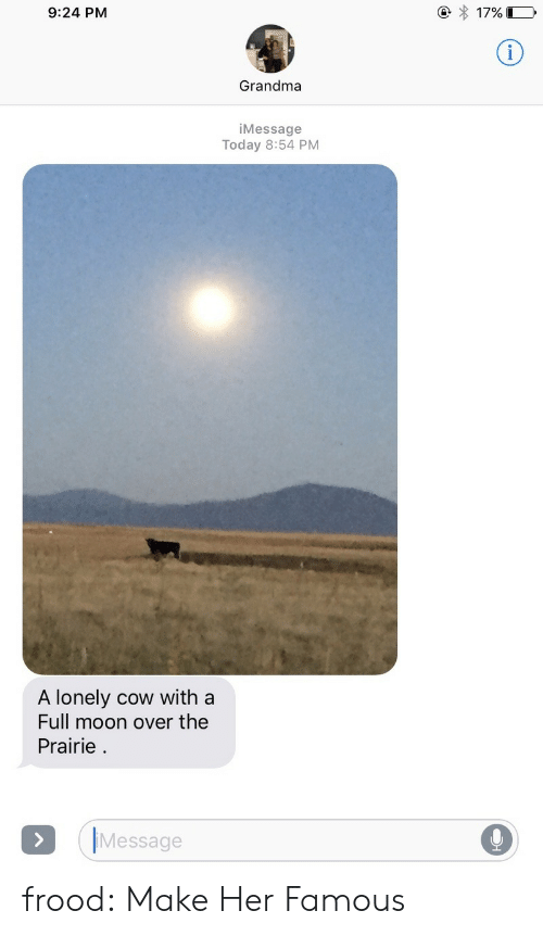 Grandma, Target, and Tumblr: 9:24 PM  () 17%  Grandma  iMessage  Today 8:54 PM  A lonely cow with a  Full moon over the  Prairie  Message frood:  Make Her Famous
