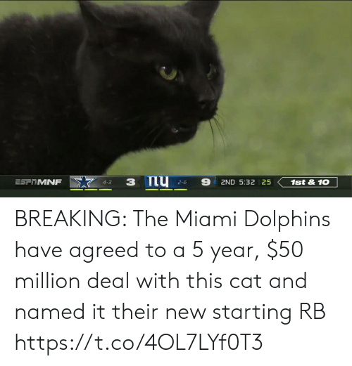 Sports, Miami Dolphins, and Dolphins: 9  ESFTMNF  1st&10  2ND 5:32 25  4-3  2-6 BREAKING: The Miami Dolphins have agreed to a 5 year, $50 million deal with this cat and named it their new starting RB https://t.co/4OL7LYf0T3