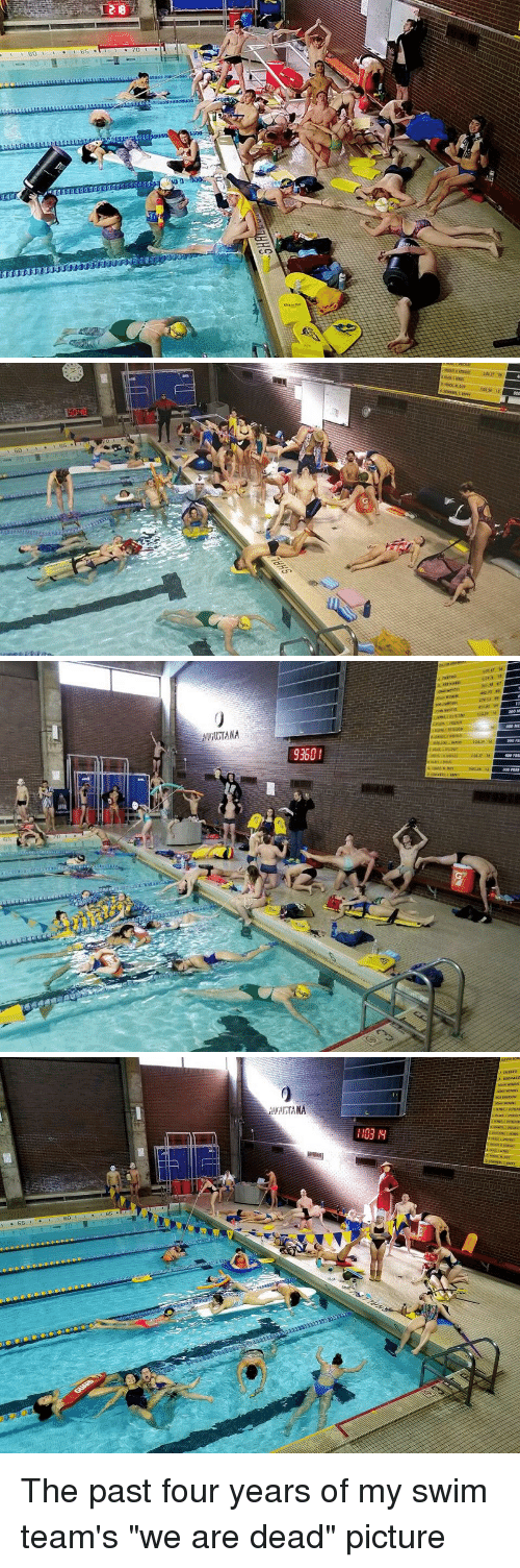 """Funny, Picture, and Dead: 9360I  65 The past four years of my swim team's """"we are dead"""" picture"""