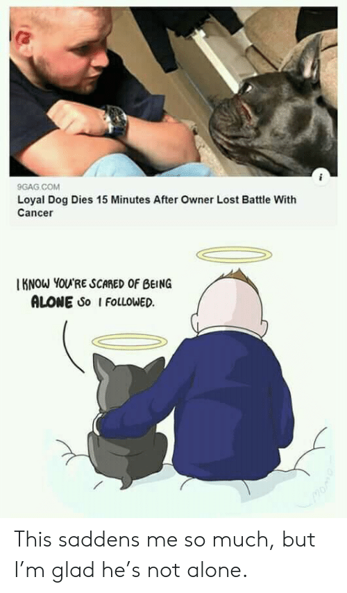 Cancer: 9GAG COM  Loyal Dog Dies 15 Minutes After Owner Lost Battle With  Cancer  KNOW YOU'RE SCARED OF BEING  ALONE So I FOLLOWED This saddens me so much, but I'm glad he's not alone.