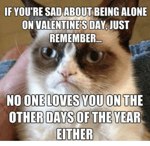 Alone On Valentines Day: IF YOUTRE SAD ABOUT BEING ALONE  ON VALENTINES DAY JUST  REMEMBER  NO ONE LOVES YOU ON THE  OTHER DAWSOF THE YEAR  EITHER