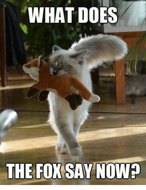 The Fox Say: WHAT DOES  THE FOX SAY NOWE