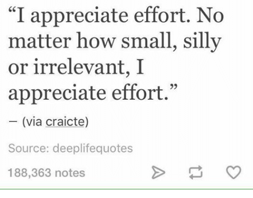 I Appreciate Effort No Matter How Small Silly Or Irrelevant I