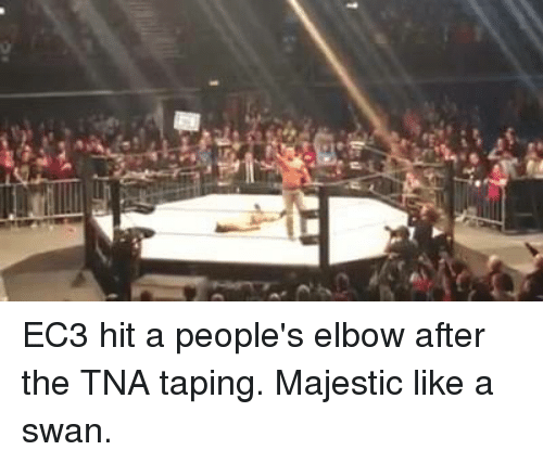 ec3: EC3 hit a people's elbow after the TNA taping. Majestic like a swan.