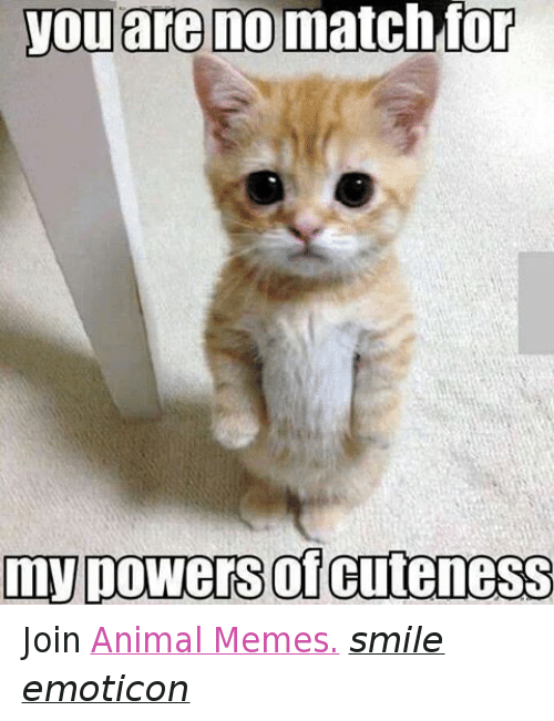 Meme Smile: you are no match for  my powers CuteneSS Join Animal Memes. smile emoticon