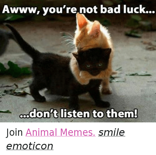 Meme Smile: Awww, you're not bad luck...  don't listen to them! Join Animal Memes. smile emoticon