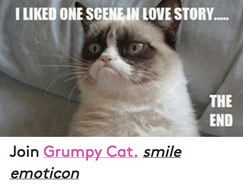 Cat Smiling: I LIKED ONE SCENE IN LOVE STORY.....  THE  END Join Grumpy Cat. smile emoticon