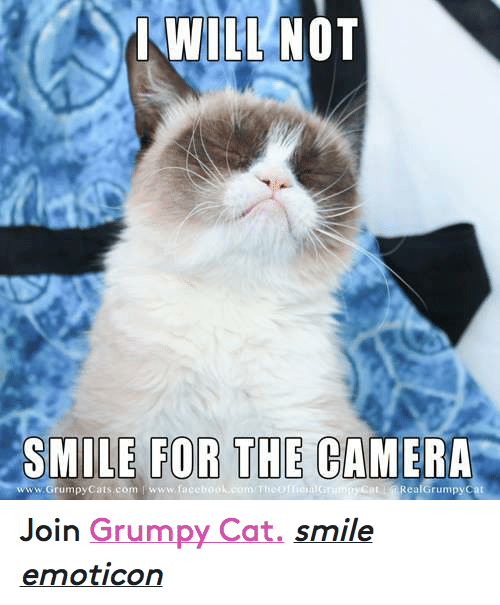 Cat Smiling: WILL NOT  SMILE FOR THE CAMERA  com T  Rea Grumpy cat  www Grumpy Cats com www.face Join Grumpy Cat. smile emoticon