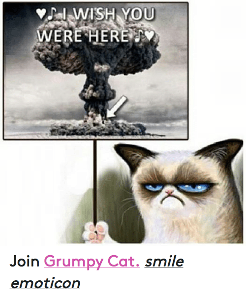Cat Smiling: WISH YOU  WERE HERE Join Grumpy Cat. smile emoticon