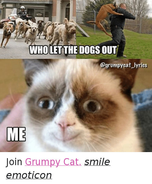 Cat Smiling: WHOLET THE DOGS OUT  @grumpy cat lyrics  ME Join Grumpy Cat. smile emoticon