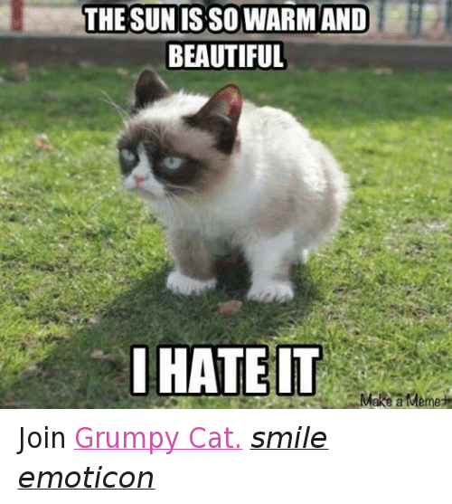 Cat Smiling: THE SUN ISSO WARM AND  BEAUTIFUL  I HATE IT  Make a Meme Join Grumpy Cat. smile emoticon