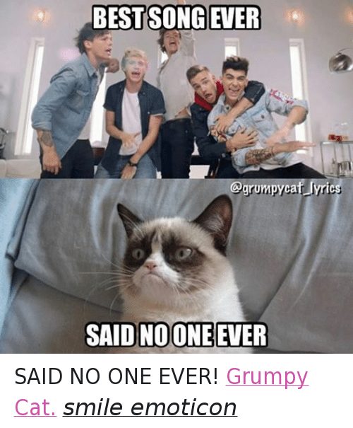 Cat Smiling: BEST SONG EVER  SAID NOONE EVER SAID NO ONE EVER! Grumpy Cat. smile emoticon