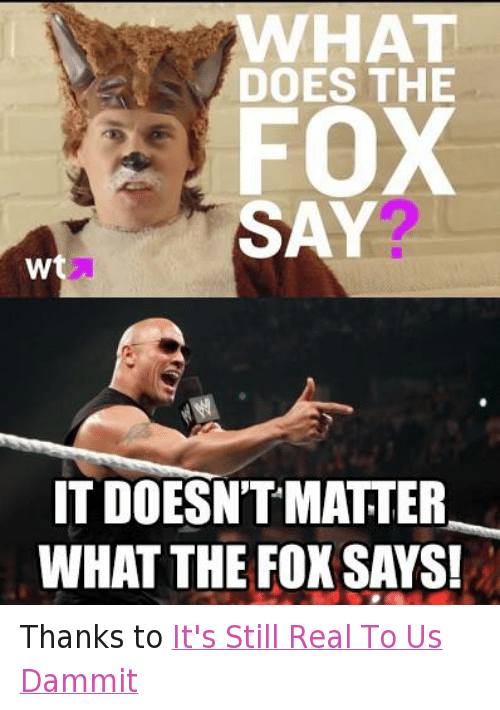 The Fox Say: WHAT  DOES THE  FOX  SAY  W  IT DOESNTMATTER  WHAT THE FOX SAYS! Thanks to It's Still Real To Us Dammit