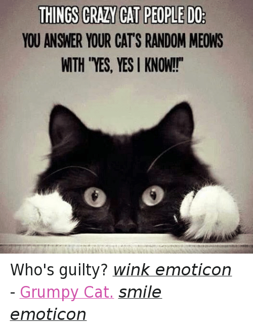 "Cat Smiling: THINGS CRAZY CAT PEOPLE DO  YOU ANSWER YOUR CATS RANDOM MEONS  WTH ""YES, YES I KNOW!!"" Who's guilty? wink emoticon - Grumpy Cat. smile emoticon"