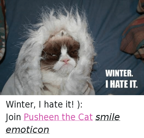 Cat Smiling: WINTER.  I HATE IT Winter, I hate it! ): Join Pusheen the Cat smile emoticon