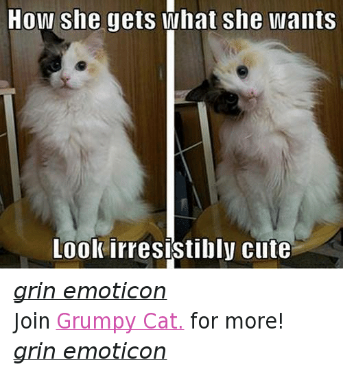 irresistable: How she gets what She wants  Look irresistibly cute grin emoticon Join Grumpy Cat. for more! grin emoticon