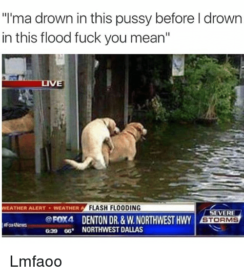 "Fuck You Meaning: ""I'ma drown in this pussy before l drown  in this flood fuck you mean""  FLASH FLOODING  WEATHER ALERT WEATHER A  SEVERE  @FOX4 DENTON DR, &WNORTHWEST HWY  STORMS  gFox4News  639 66. NORTHWEST DALLAS Lmfaoo"