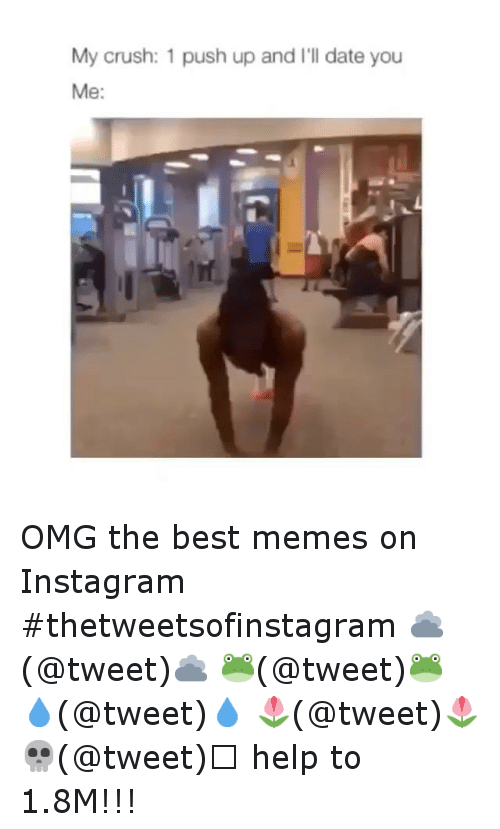 The Best Memes