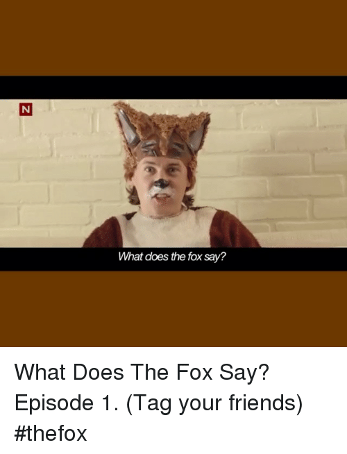 The Fox Say: What does the fox say? What Does The Fox Say? Episode 1. (Tag your friends) thefox