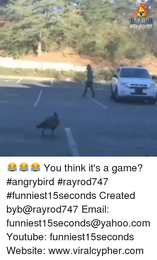 Angrybirds: U  e ERARODTH7  eR  R 😂😂😂 You think it's a game? angrybird rayrod747 funniest15seconds-Created byb@rayrod747-Email: funniest15seconds@yahoo.com-Youtube: funniest15seconds-Website: www.viralcypher.com