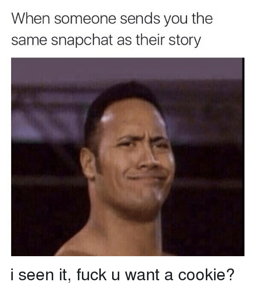 I Seen It: When someone sends you the  same snapchat as their story i seen it, fuck u want a cookie?