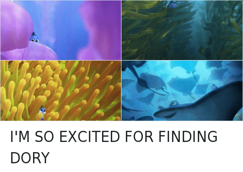 Have You Seen Her: DisNEP. PIXAR  FINDING  DORY  Have you seen her?  JUNE 17 I'M SO EXCITED FOR FINDING DORY