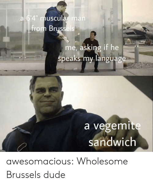 "Muscular: a 64"" muscular man  from Brussels  me, asking if he  speaks my language  a vegemite  sandwich awesomacious:  Wholesome Brussels dude"