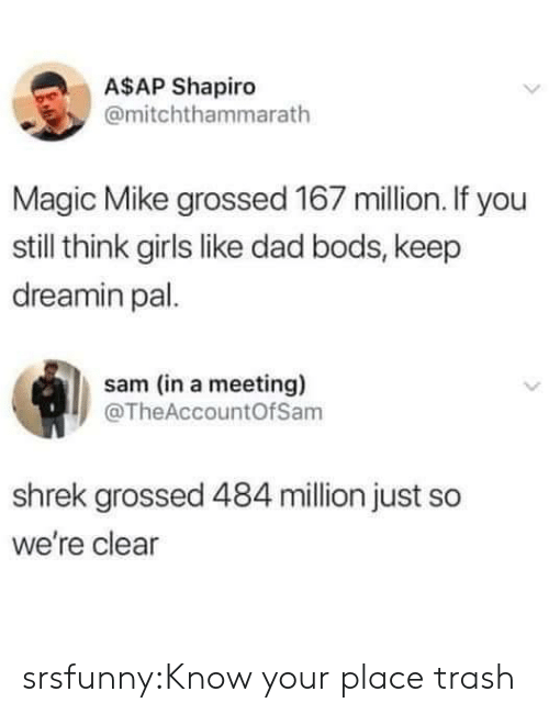 Dad, Girls, and Shrek: A$AP Shapiro  @mitchthammarath  Magic Mike grossed 167 million. If you  still think girls like dad bods, keep  dreamin pal.  sam (in a meeting)  @TheAccountOfSam  shrek grossed 484 million just so  we're clear srsfunny:Know your place trash