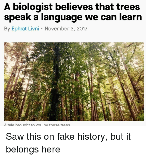 Fake, Saw, and History: A biologist believes that trees  speak a language we can learn  By Ephrat Livni November 3, 2017