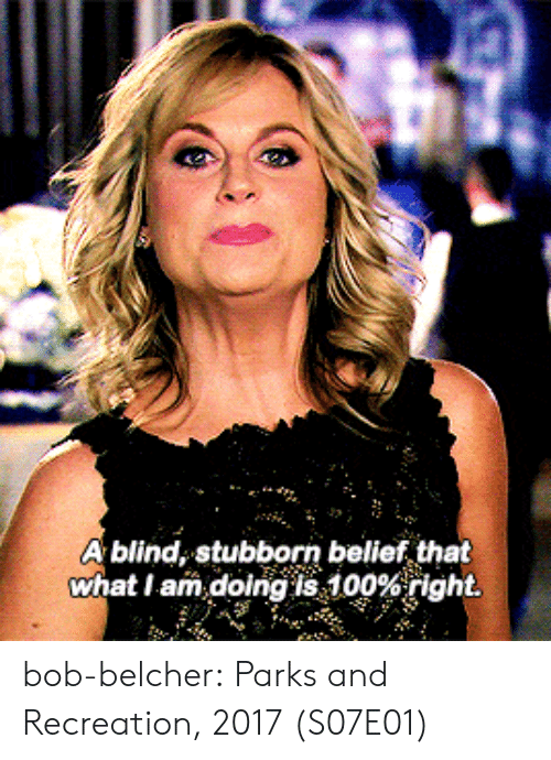 Belief: A blind, stubborn belief that  what I am.doingis 100%right. bob-belcher: Parks and Recreation, 2017 (S07E01)