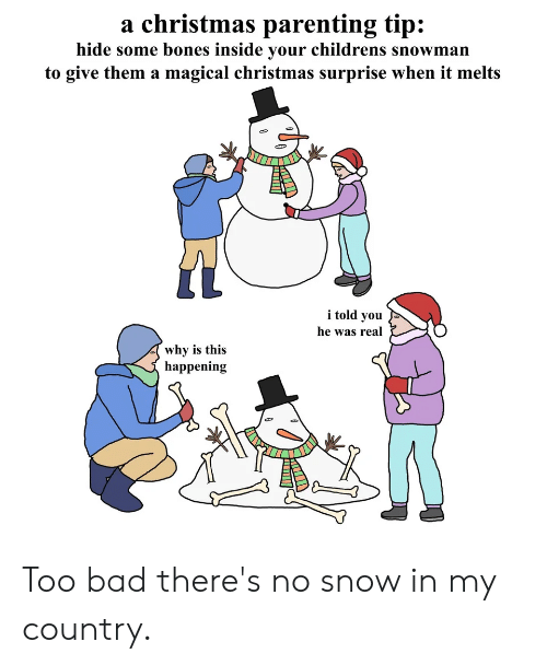 Bad, Bones, and Christmas: a christmas parenting tip:  hide some bones inside your childrens snowman  to give them a magical christmas surprise when it melts  i told you  he was real  why is this  happening Too bad there's no snow in my country.