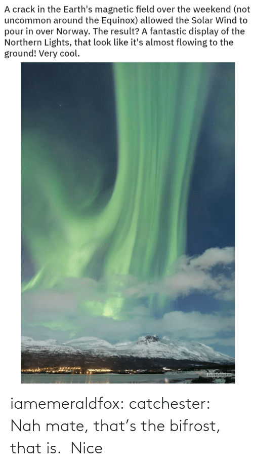 mate: A crack in the Earth's magnetic field over the weekend (not  uncommon around the Equinox) allowed the Solar Wind to  pour in over Norway. The result? A fantastic display of the  Northern Lights, that look like it's almost flowing to the  ground! Very cool.  atenTANDE iamemeraldfox:  catchester: Nah mate, that's the bifrost, that is.   Nice