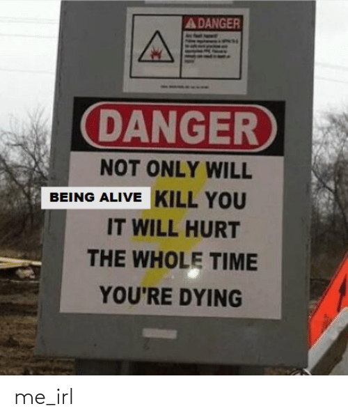 the whole time: A DANGER  DANGER  NOT ONLY WILL  BEING ALIVE KILL YOU  IT WILL HURT  THE WHOLE TIME  YOU'RE DYING me_irl