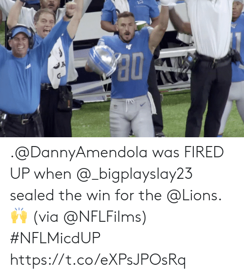 Memes, Lions, and 🤖: A .@DannyAmendola was FIRED UP when @_bigplayslay23 sealed the win for the @Lions. 🙌 (via @NFLFilms) #NFLMicdUP https://t.co/eXPsJPOsRq