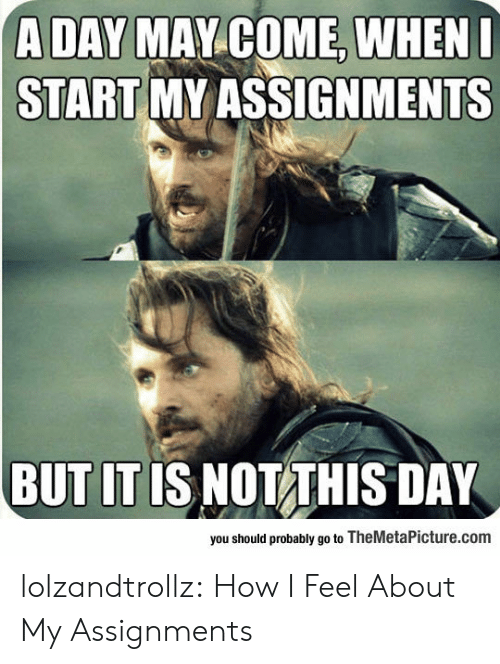 How I Feel: A DAY MAY COME, WHENI  START MY ASSIGNMENTS  BUT IT IS NOT THIS DAY  you should probably go to TheMetaPicture.com lolzandtrollz:  How I Feel About My Assignments