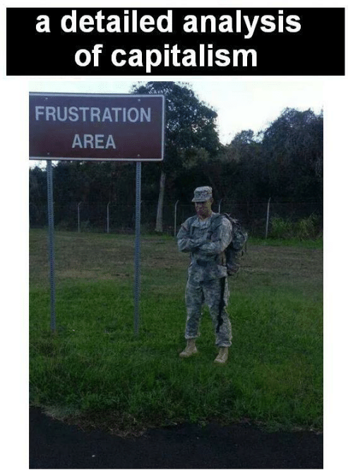analysis: a detailed analysis  of capitalism  FRUSTRATION  AREA
