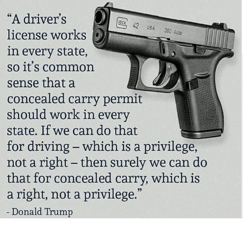 "Donald Trump, Driving, and Work: ""A driver's  license works  in every state,  so it's common  sense that a  concealed carry permit  should work in every  state. If we can do that  for driving - which is a privilege  not a right- then surely we can do  that for concealed carry, which is  a right, not a privilege.""  Donald Trump  OCK 42 USA 380 Auto"