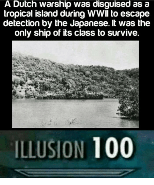 Anaconda, Dutch Language, and Japanese: A Dutch warship was disguised as a  tropical island during WWlIl to escape  detection by the Japanese. lt was the  only ship of its class to survive.  ILLUSION 100
